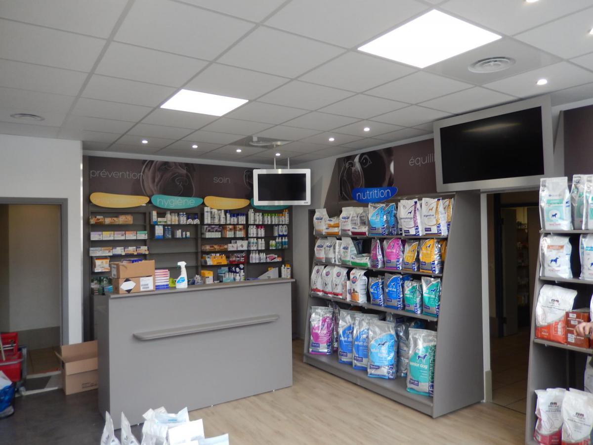 Éclairage accueil clinique vétérinaire à Rennes (35000)